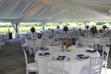 Tent Vineyard Weddings