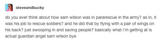 give me more of Sam Wilson