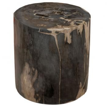 1000 images about petrified wood on pinterest shenzhen for Petrified wood furniture for sale