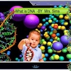 Hello Everyone  In this PPT file you will find a clear explanation of the DNA structure and function, the Replication process and a comprehensive as...