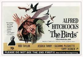 the birds hitchcock - Google zoeken