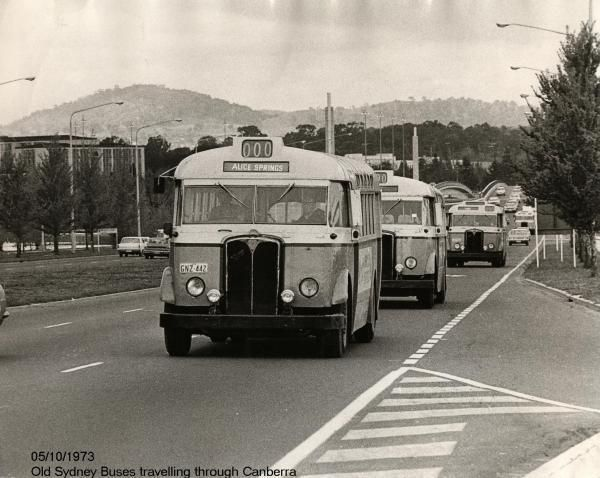08-Old Sydney buses, 1973.jpg (600×478)