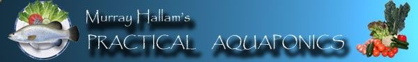Questions on setting up system with 55 gallon aquarium. - @ aquaponics.net.au