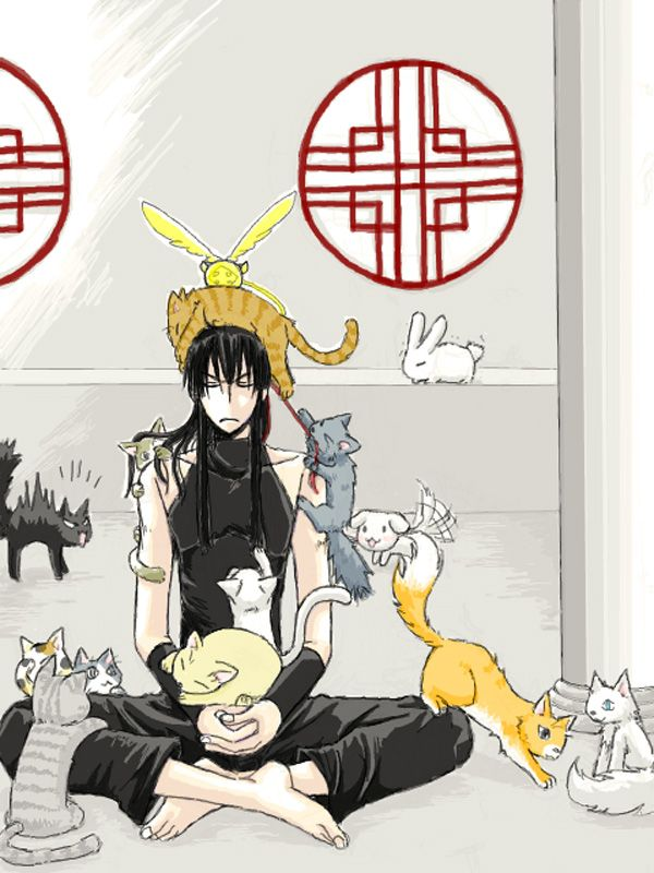Heehee cats have taken over! Funny I love cats AND Kanda <3