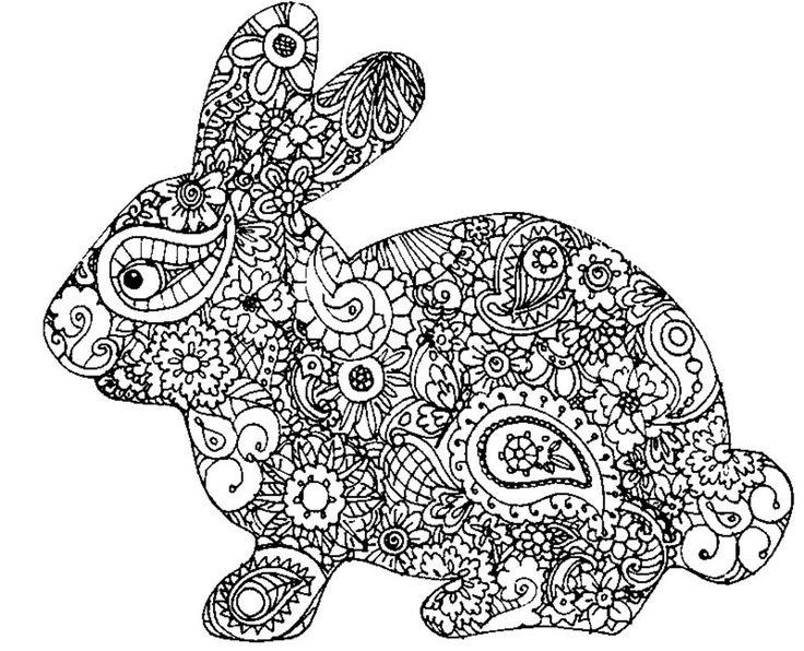 pin by mariska rodenburg on kleurplaat bunny coloring
