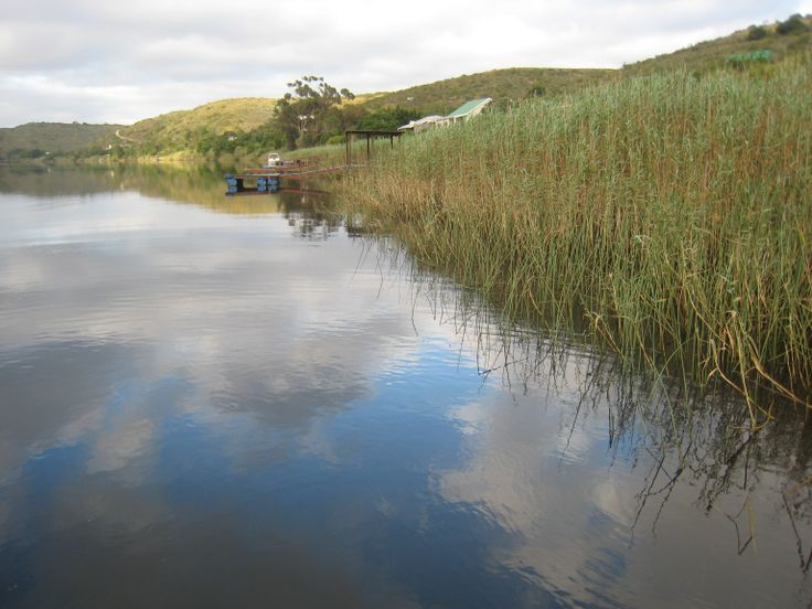 Breede River - reflections