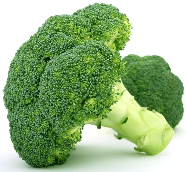 160 best broccoli images on pinterest cooking recipes