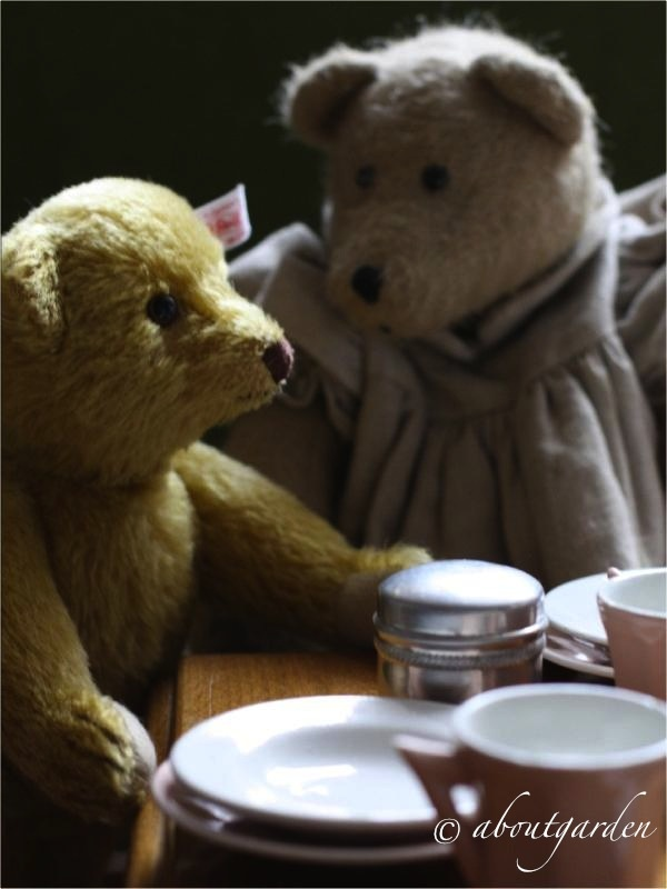 "teddy tea party...I like the idea of ""little girl-ing"" it up with stuffed animals :)"