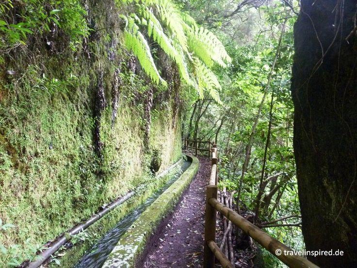 Durch die Wasserschlucht Barranco del Agua, Los Tiles, La Palma wandern