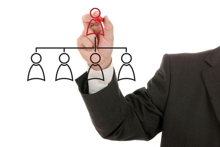 Estructura de la organización: departamentalización Departamentalización por funciones de la empresa o funcional Agrupar las actividades según las funciones de una empresa (producción, ventas y finanzas). La departamentalización funcional es el sistema que más se emplea para organizar actividades y está presente al menos en algún nivel en la estructura organizacional de casi cualquier empresa.