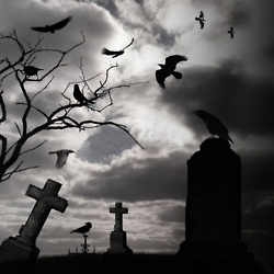 Crows Flying over Graves