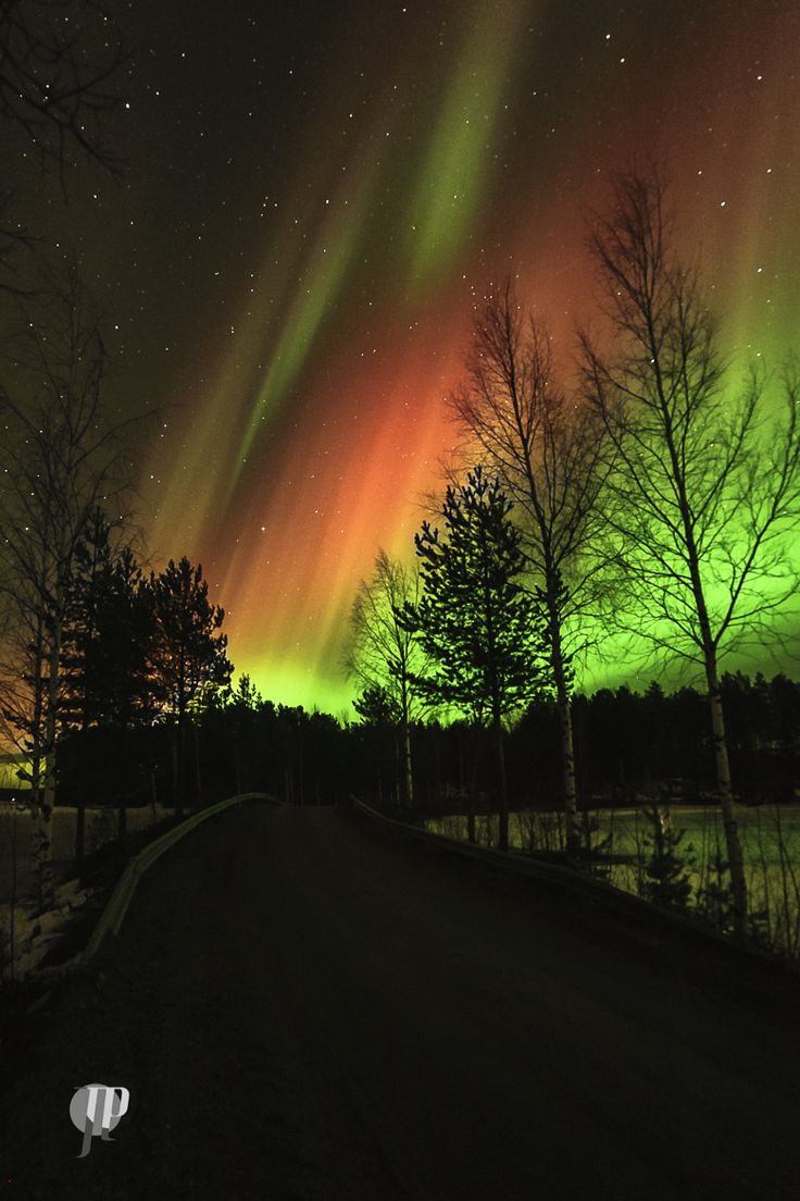 Photograph Auroras by JiiPee on 500px