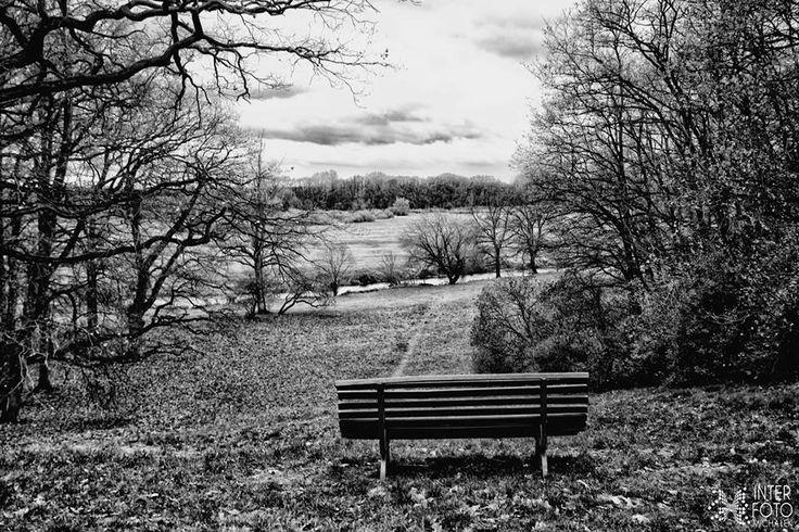 Piękne miejsce znajdujące się w Rogalińskim parku.