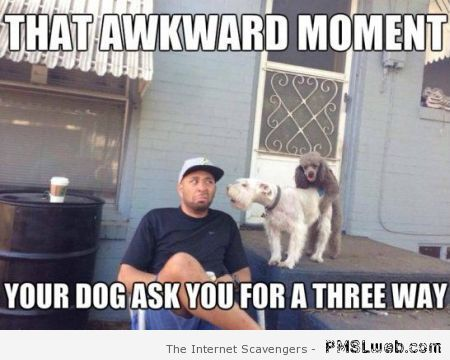 Monday funny pics  Starting the new week on a chuckle  PMSLweb