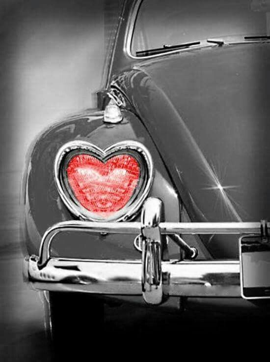 68 best images on pinterest heart 5 let me show you the shape of my heart photos fandeluxe Gallery