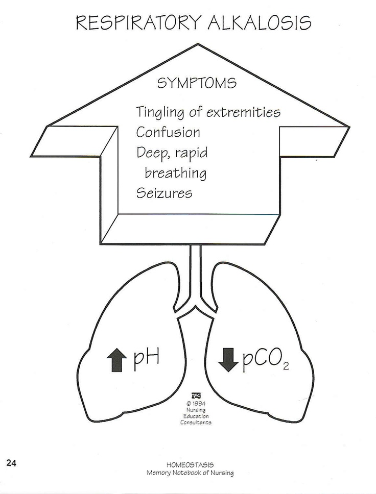 25+ best ideas about respiratory alkalosis on pinterest, Skeleton
