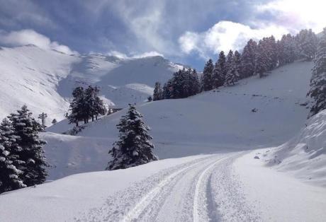 Καλάβρυτα: Λευκά Χριστούγεννα στα ορεινά - Ασπρισαν τα πάντα στον Χελμό - Το έστρωσε για τα καλά απο χθες - ΔΕΙΤΕ ΦΩΤΟ Λευκό το τοπίο