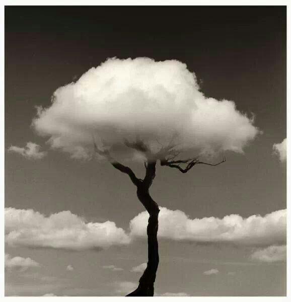 Top 52 des superbes photos surréalistes noir et blanc de Chema Madoz