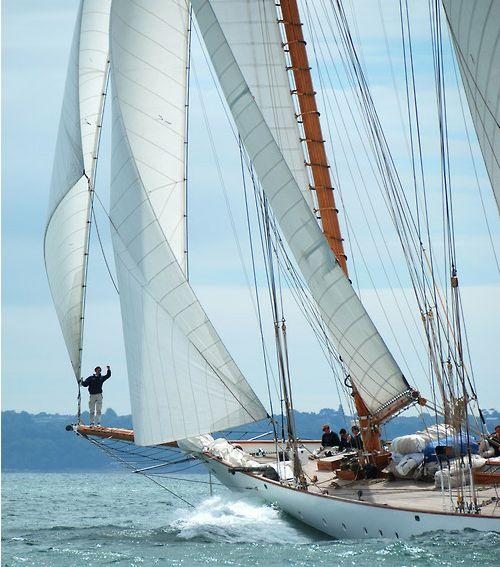 sail sail sailing