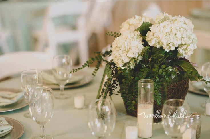 half the table centerpieces were made of a grapevine basket filled with an assortment of ferns and white hydrangea
