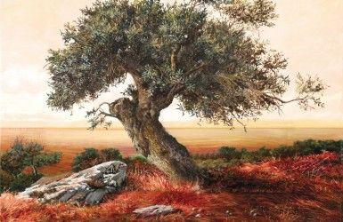 ΕΛΑΙΟΤΥΠΙΑ OLIVE TREE VIEW I