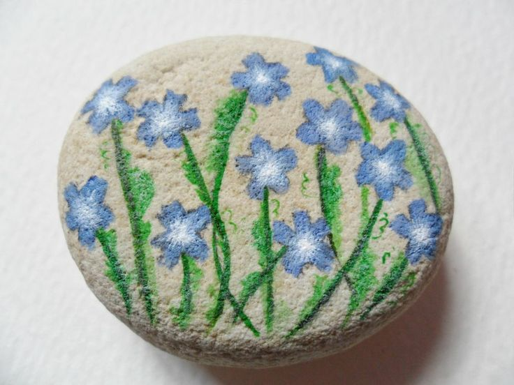 Baby blue eyes flower- Hand painted paperweight rock painting - Beach pebble art