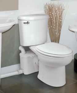 An upflush toilet for basement remodel