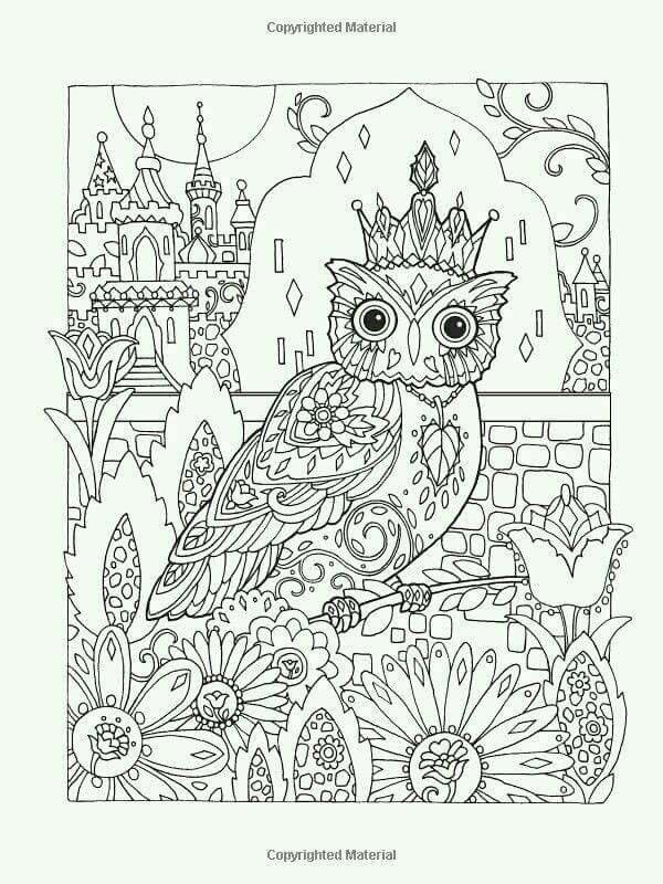 Owl Coloring Page Creative Haven Owls Book Artwork By Marjorie Sarnat