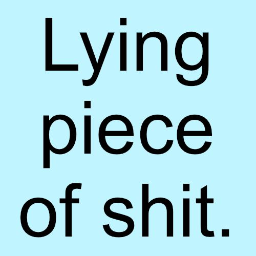 Image result for lying piece of poop