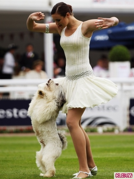 Ashleigh & Pudsey (dog trick act, winner of  Britain's Got Talent 2012) Disc dogs to the extreme. We have a have-a-go at trick training on July 20th in Fleet, Hampshire. www.pawsforsuccess.co.uk