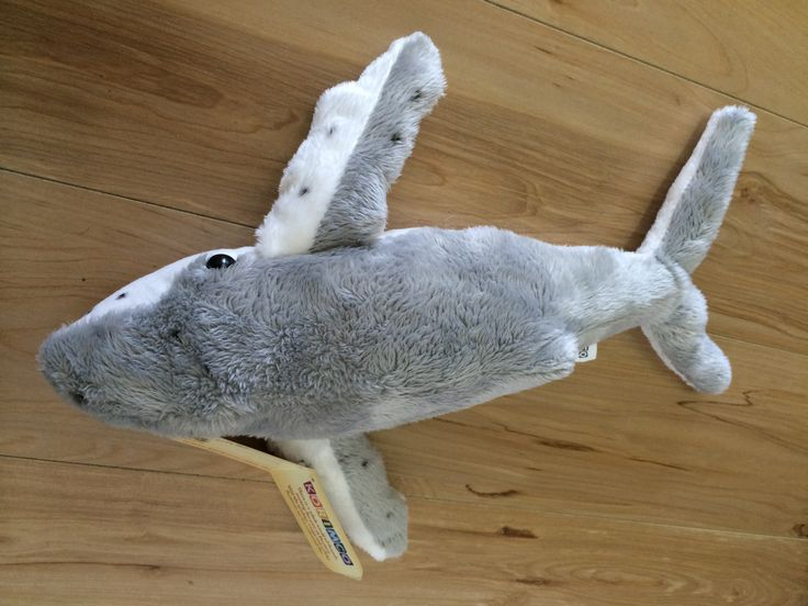 Plush Whale Toy available to purchase as a souvenir of your amazing whale watching experience. #brisbanewhalewatching #whalemerch #australiansouvenir #whalemerchandise #whalewatching #australia