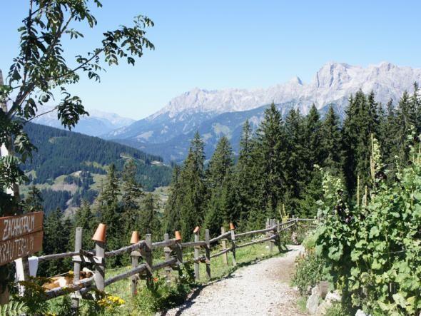 Tipps für Aktivurlaub in Österreich:  Tankstelle für E-Bikes, Kräutergarten und Naturapotheke in