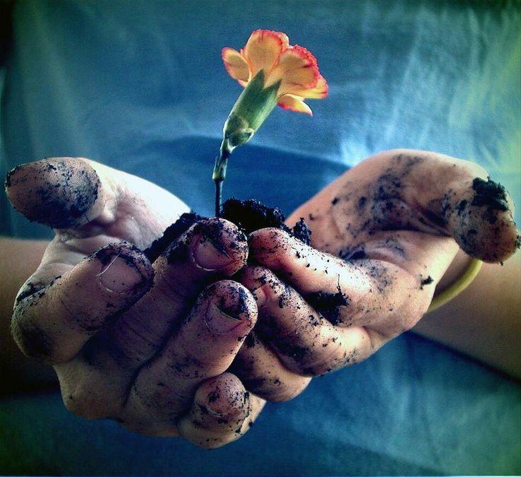 """""""Sır gibi seversen eğer, muradın gerçekleşir. Çünkü tohum, toprağa gizlenirse yeşerir.""""   Mevlana"""
