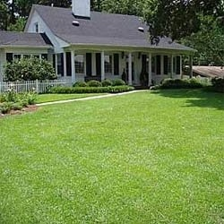 """Creating a new lawn from seed is not as difficult as people might think, in fact it is quite easy with the right equipment and a bit of knowledge to help you.    There are two general types of lawn grass seed, the first is what they call a """"warm season seed"""", these can include the bermuda grass seed and the zoysia grass seed, these sorts of seed can hold up extremely well in the hot humid heat of the south."""