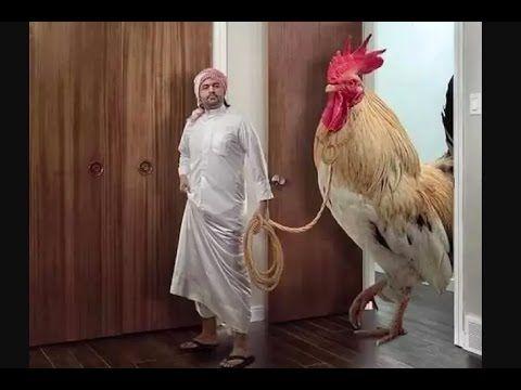 89 Gambar Ayam Raksasa Terbaik