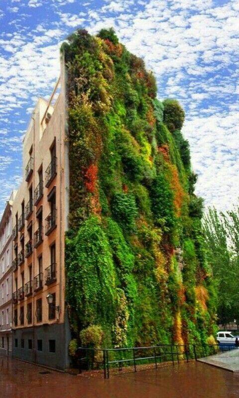 Madrid vertikale tuin (zie andere foto/pin)