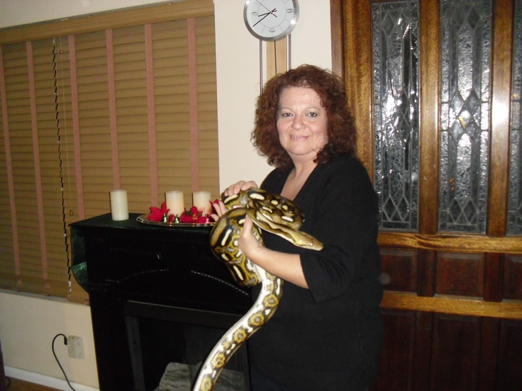 Alohanani means Beautiful Love. Here she is just about 8' long. This was last Christmas she is now just a little over 10' long. in the sun her colors are so AWESOME... As of December 2014 she is now 12 ft long, and getting ready to shed so meaning she is getting longer