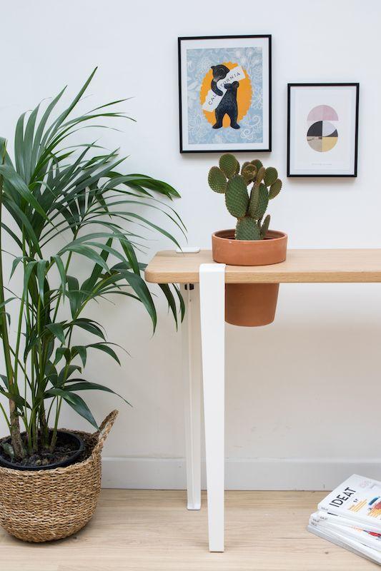 Console végétale en chêne massif (plateau 90x28x3cm) créée à partir de 4 pieds blanc nuage 75cm permettant d'accueillir un grand cactus -  Collab' TIPTOE x BERGAMOTTE
