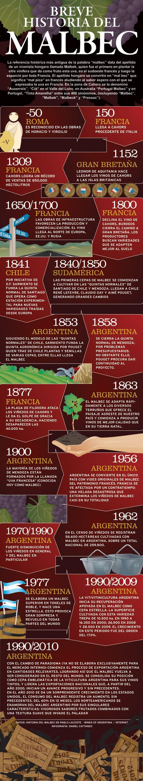 Breve historia del Malbec - Area del Vino