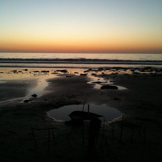 a photo i took at La Jolla shores. home, sweet home.