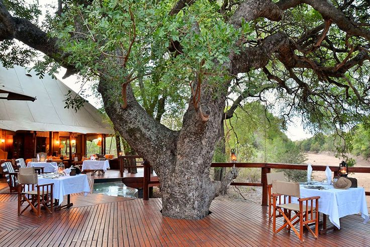 Hamiltons Tented Camp Game Reserve Accommodation - Skukuza, Kruger Park  Reminiscent of an Out of Africa experience, a stay at Hamiltons Tented Camp is one that will remain etched in memory.