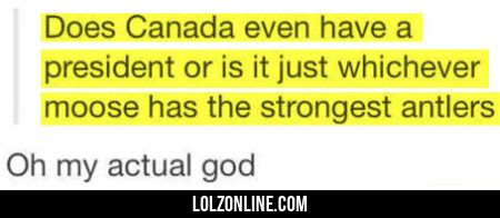 Does Canada Even Have A President Or..#funny #lol #lolzonline