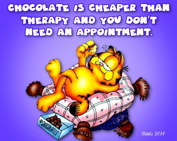 Garfield... Chocolate is Cheaper than Therapy and You Don't Need an Appointment!