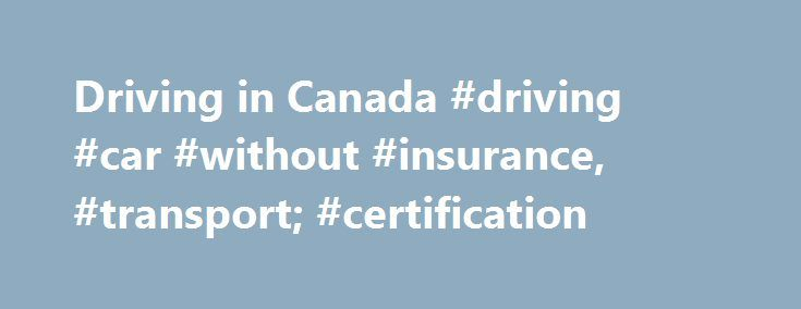 Driving in Canada #driving #car #without #insurance, #transport; #certification http://texas.remmont.com/driving-in-canada-driving-car-without-insurance-transport-certification/  # Driving in Canada Driving licences To legally drive a car in Canada, you will need a driver s licence. In Canada, provincial and territorial governments issue drivers licences. With a licence you can drive anywhere in Canada. You must have it with you whenever you are driving. If you have a valid licence from your…
