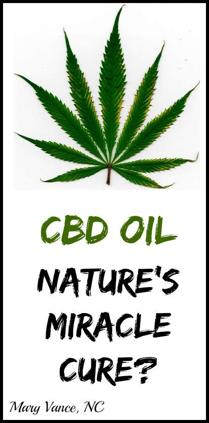 CBD Oil: is this cannabinoid the next miracle cure for cancer, seizures, pain, multiple sclerosis, bi-polar disorder, insomnia, and anxiety?