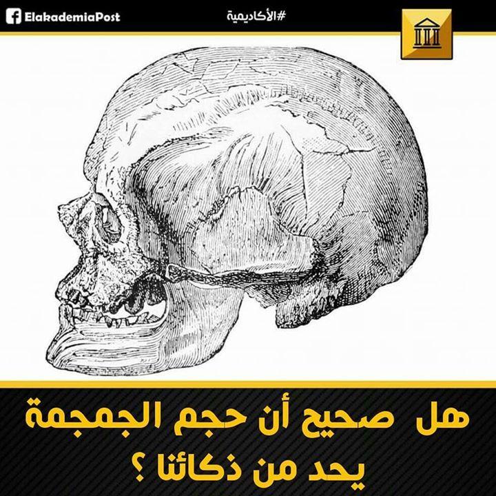 هل صحيح أن حجم الجمجمة يحد من ذكائنا إن الذكاء البشري لا يمكن أن يتطور أكثر لأن حجم جمجمتنا محدود من الواضح أن هذا التصور يحد الذكاء وتطور نوعنا بشكل عام