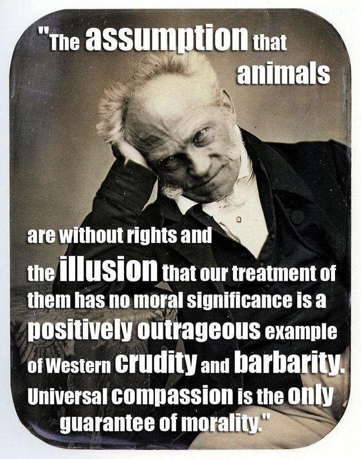 A report on arthur schopenhauers philosophy of pessimism