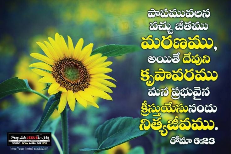 33 best images about Telugu Bible walls on Pinterest ...