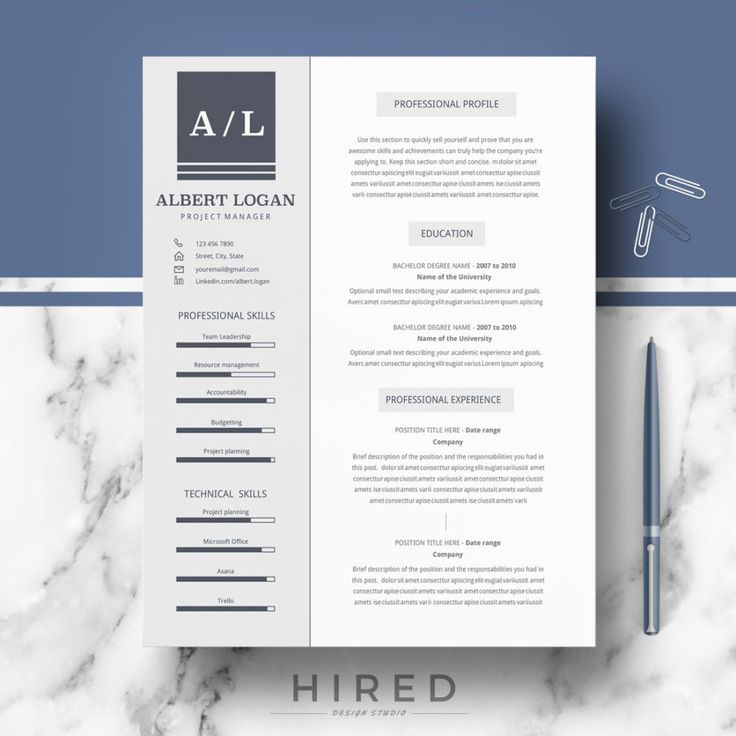 Professional Modern and Minimalist Resume Template for