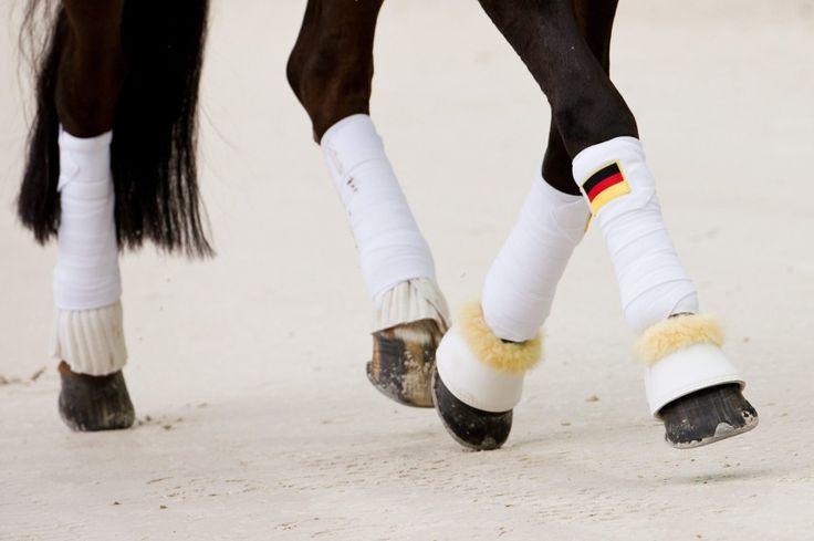 """Helen Langehanenberg z Niemiec na koniu """"Damon Hill NRW"""" w mistrzostwach świata World Equestrian Games 2014 w Caen, Francja. To największe wydarzenie sportowe we Francji w 2014 roku - przyjechało ok. 900 jeźdźców, woltyżerów i ich koni z ponad 60 krajów. Do 7 września odbędzie się rywalizacja w dyscyplinach: skoki przez przeszkody, ujeżdżenie i para-ujeżdżenie, WKKW, powożenie, woltyżerka, rajdy i reining."""